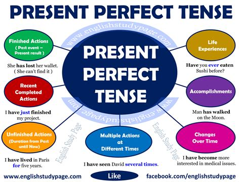 Examples of present perfect tense png 3477x2646
